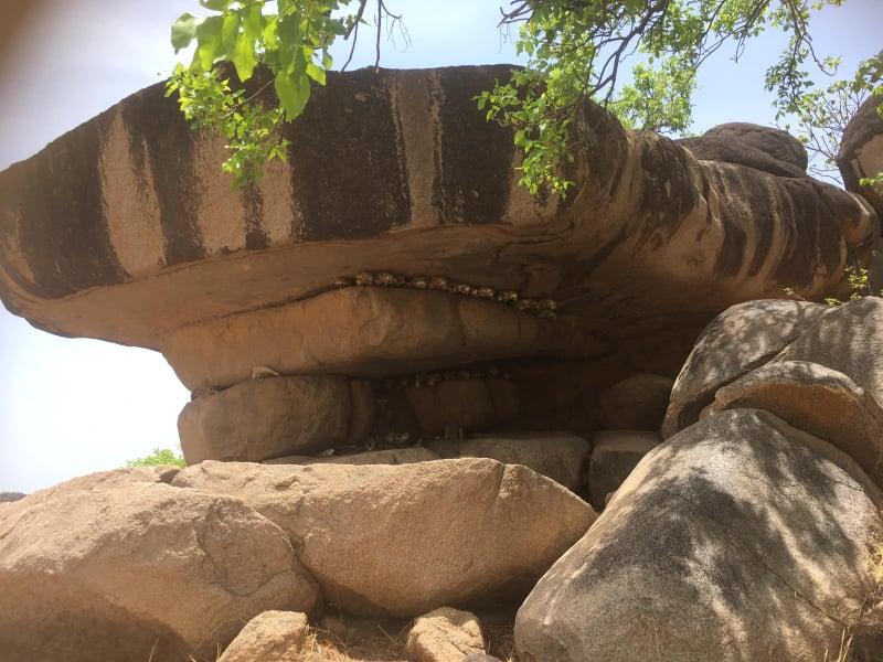 Op reis door noord Ghana